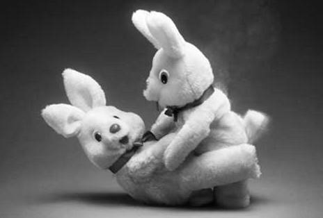 bunny sex relationships
