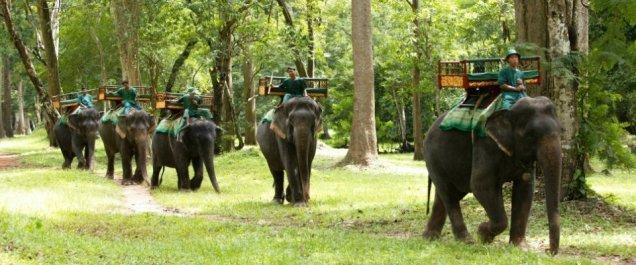 92_c8beb-Cambodia-at-a-glance--Phnom-Penh-and-Siem-Reap--Cambodia