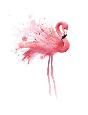 Flamingo illustration